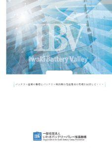 IBVパンフレット